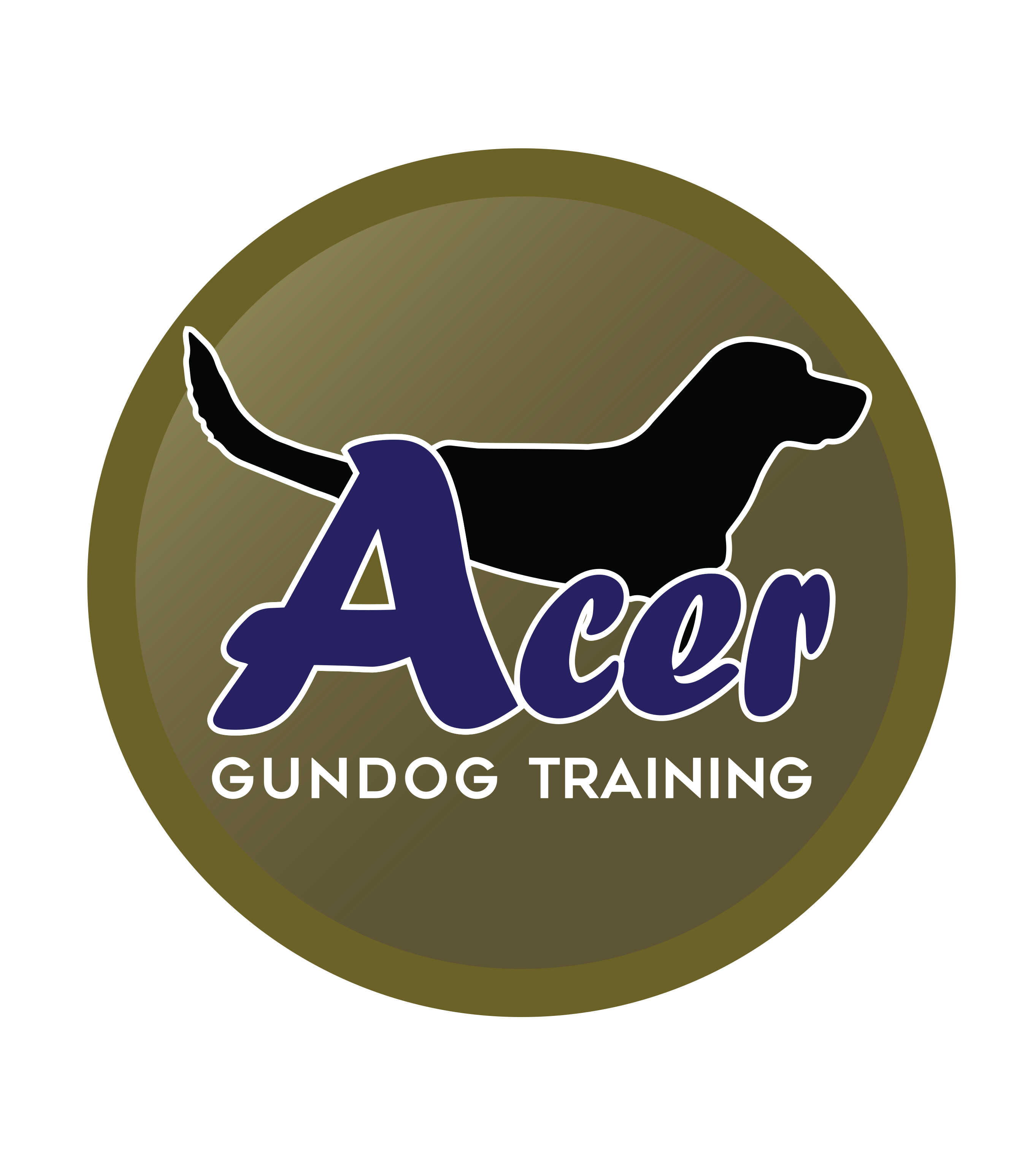 Imdt Dog Training Reviews