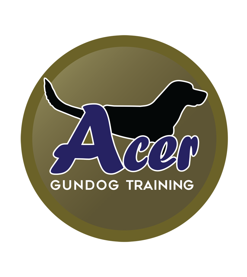 Acer Gundog Training Hertfordshire