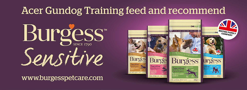best dog food for gundogs
